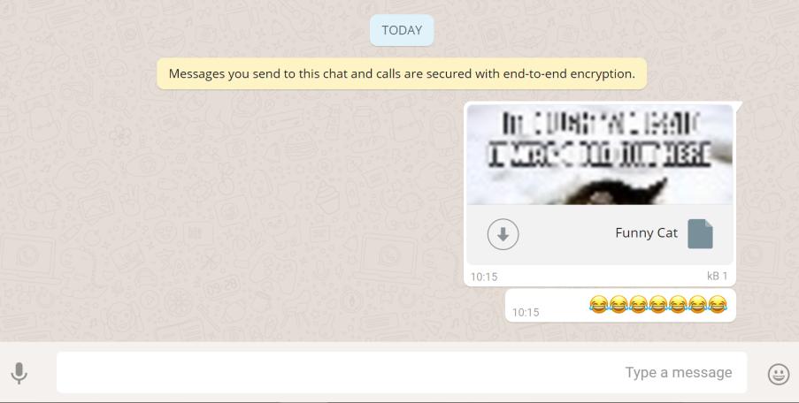 WhatsApp Research